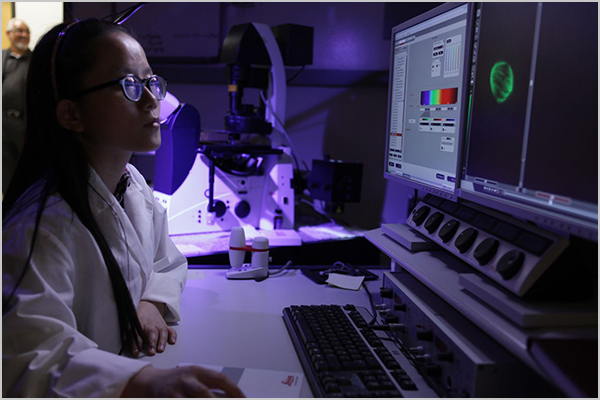 The Morehouse School of Medicine Image Analysis Facility